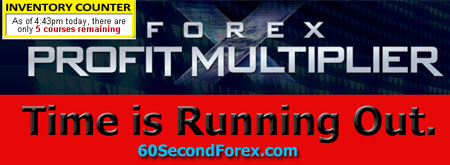 Forex profit multiplier review